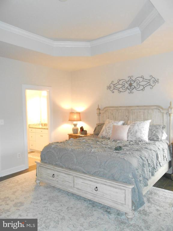 Master Bedroom with Trey Ceiling - 6435 BOB WHITE DRIVE, WARRENTON