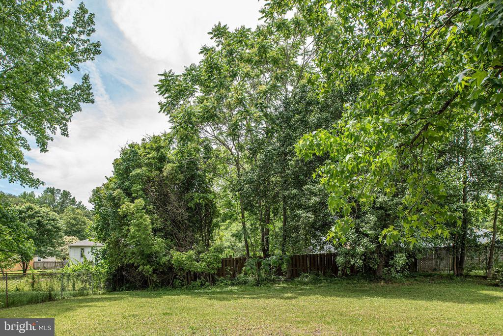 Trees surround the backyard - 146 WINEWOOD DR, LOCUST GROVE