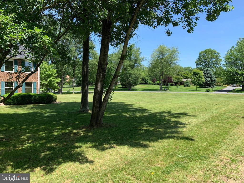 Large right side lot - perfect for entertaining! - 14182 WYNGATE DR, GAINESVILLE