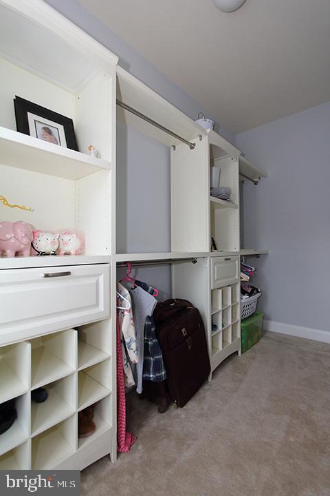 Large walk in closet with built ins (bedroom #3) - 21716 MUNDAY HILL PL, BROADLANDS