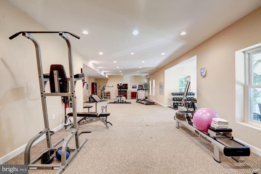 Walk - out lower level - 43705 MAHOGANY RUN CT, LEESBURG