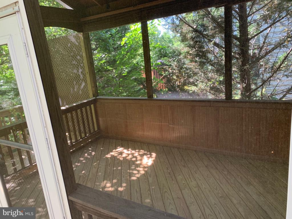 Rear screened in porch - lots of privacy - 26032 TALAMORE DR, CHANTILLY