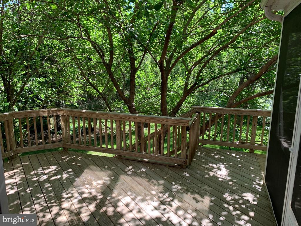 Beautiful trees and landscaping throughout yard - 26032 TALAMORE DR, CHANTILLY