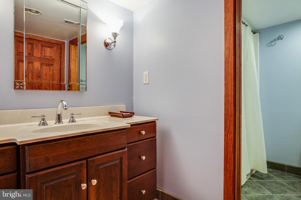 Lower level bathroom - 122 MADISON CIR, LOCUST GROVE