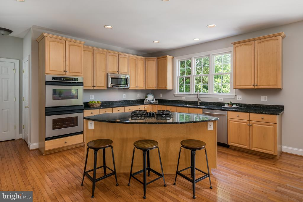 Large island for cooking and entertaining - 19030 COTON FARM CT, LEESBURG