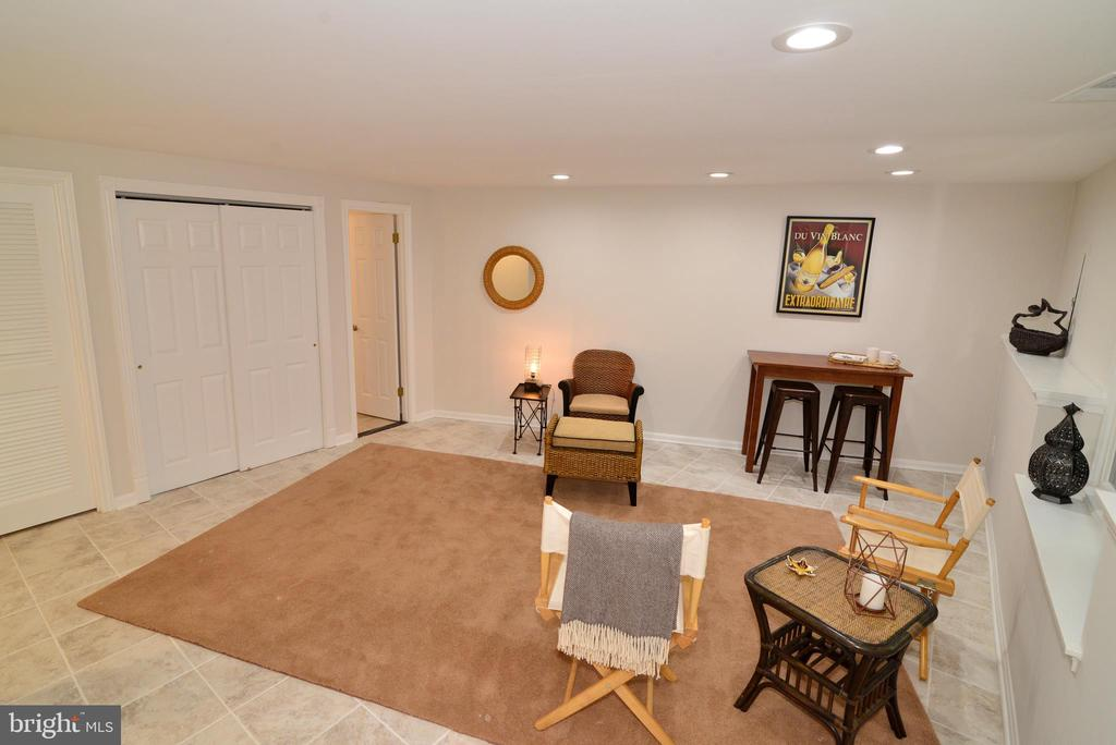 Lower level - 11296 SILENTWOOD LN, RESTON