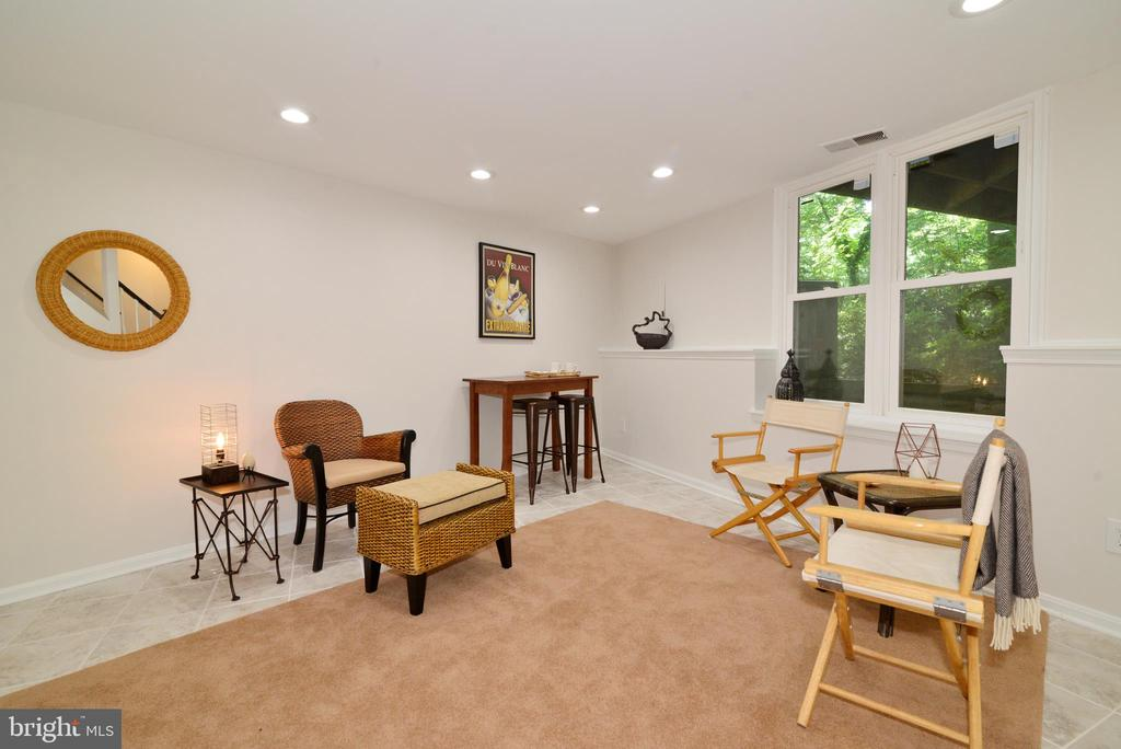 Lower level recreation and/or bedroom - 11296 SILENTWOOD LN, RESTON