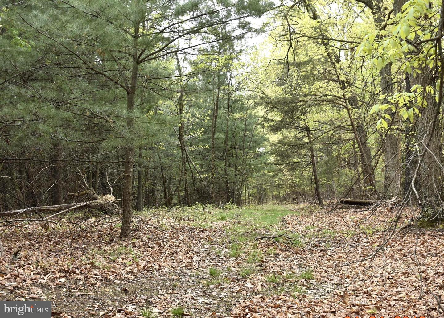 Land for Sale at Breedens Addition Berkeley Springs, West Virginia 25411 United States