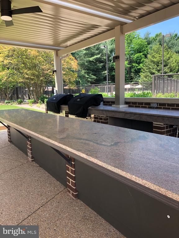 Reserve the Outdoor Kitchen for Entertaining - 1800 OLD MEADOW RD #606, MCLEAN