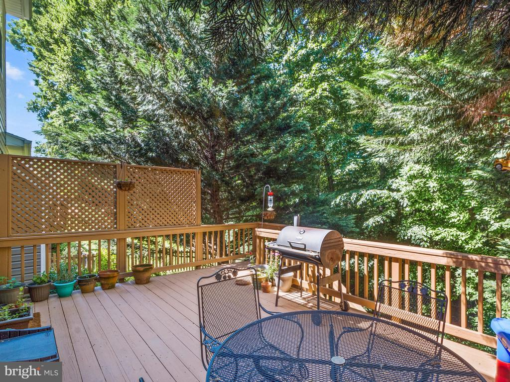 Back Deck perfect for entertaining - 15528 BOAR RUN CT, MANASSAS