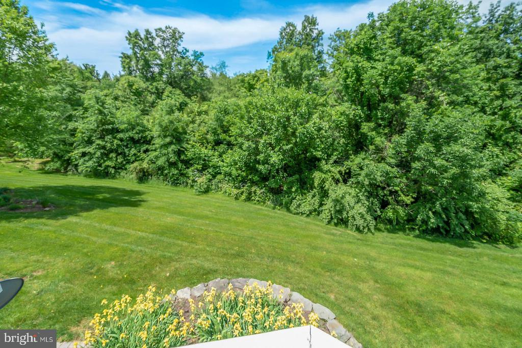 Private View of Backyard and Treed Area - 19883 NAPLES LAKES TER, ASHBURN