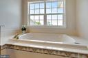 Jacuzzi Tub and Window in Master Bath - 19883 NAPLES LAKES TER, ASHBURN
