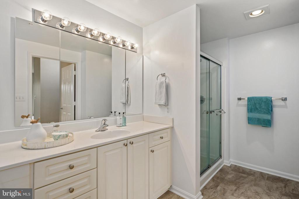 Master Bath features separate shower and tub - 19350 MAGNOLIA GROVE SQ #207, LEESBURG