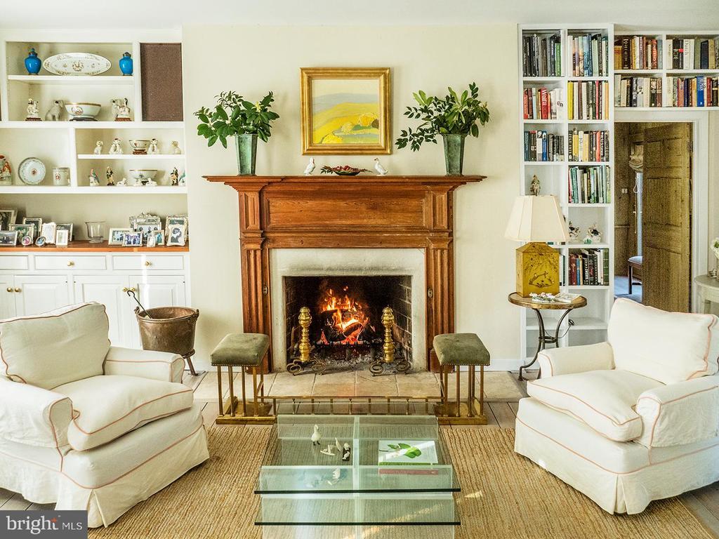 Light filled Living Room with Built Ins - 10211 KATIE BIRD LN, VIENNA