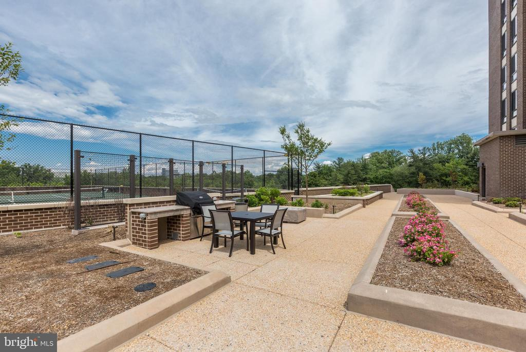 BBQ for entertaining - 1800 OLD MEADOW RD #1020, MCLEAN