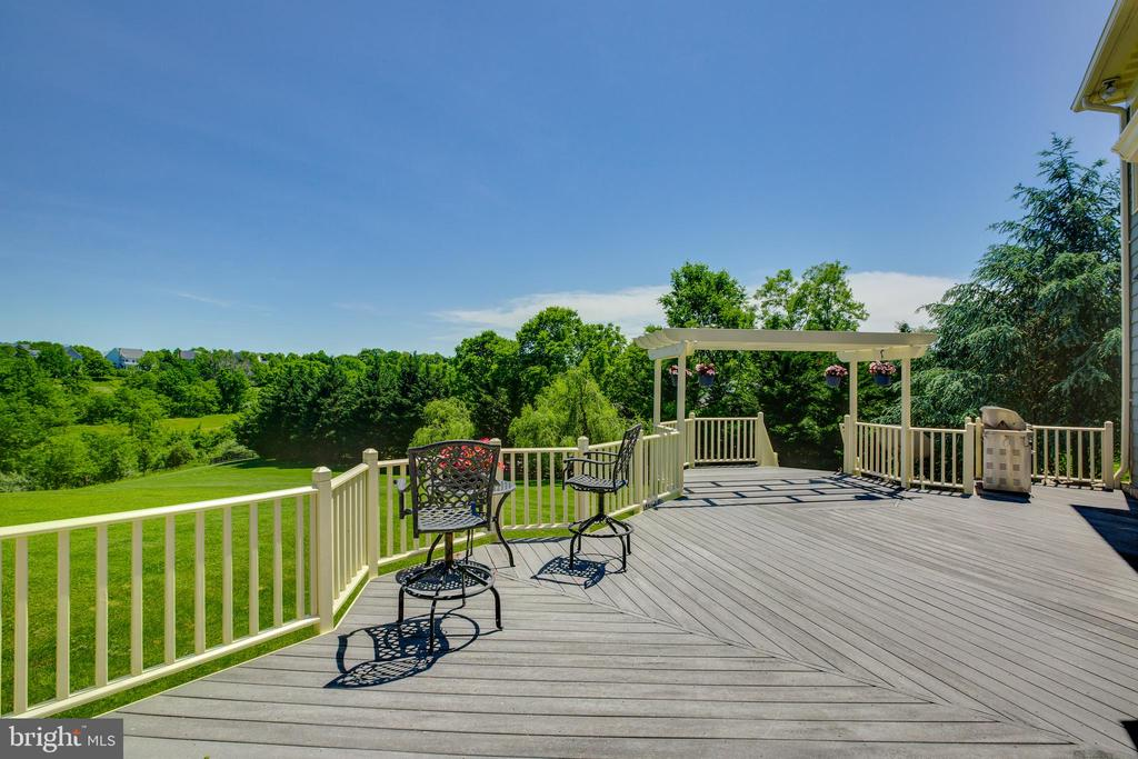 Spacious deck with beautiful views - 17072 SILVER CHARM PL, LEESBURG