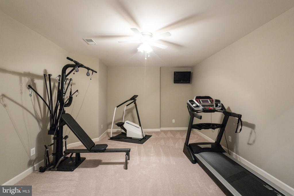 Exercise room - 17072 SILVER CHARM PL, LEESBURG