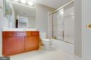 Lower level bathroom - 17072 SILVER CHARM PL, LEESBURG