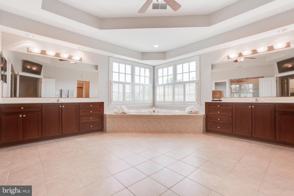 Luxury master bathroom - 17072 SILVER CHARM PL, LEESBURG