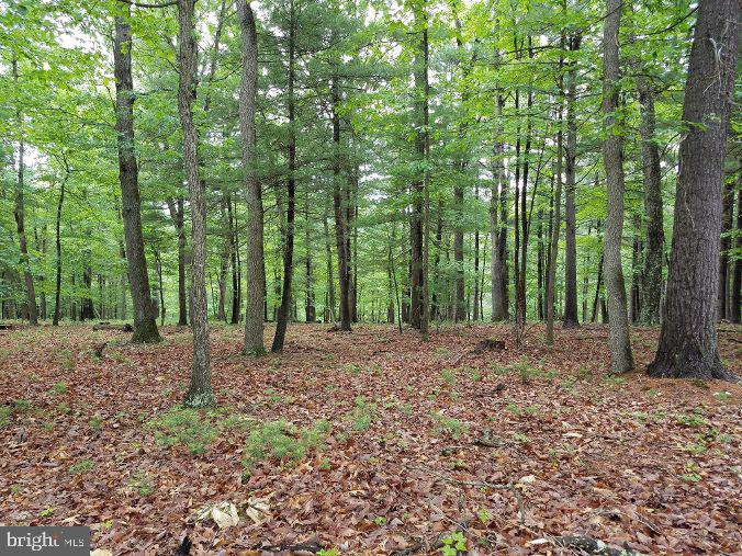 Terreno para Venda às Yellow Spring, West Virginia 26865 Estados Unidos