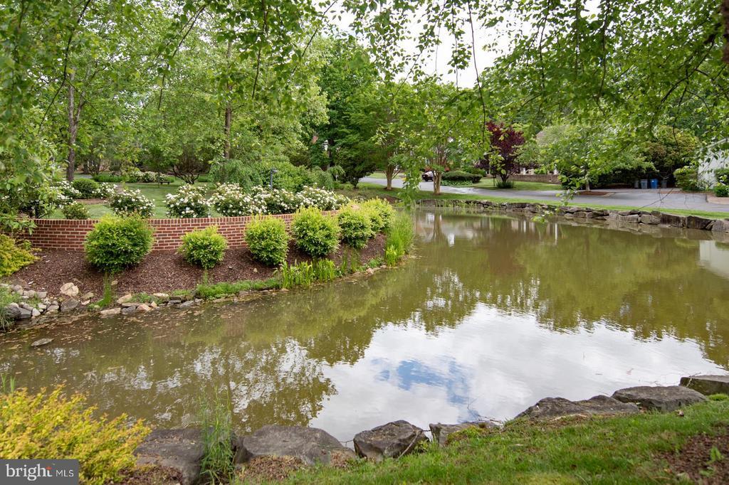 Serene Pond - 3612 SOUTH PL #7, ALEXANDRIA