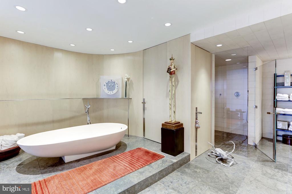 Custom Bathtub - 700 NEW HAMPSHIRE AVE NW #1021, WASHINGTON