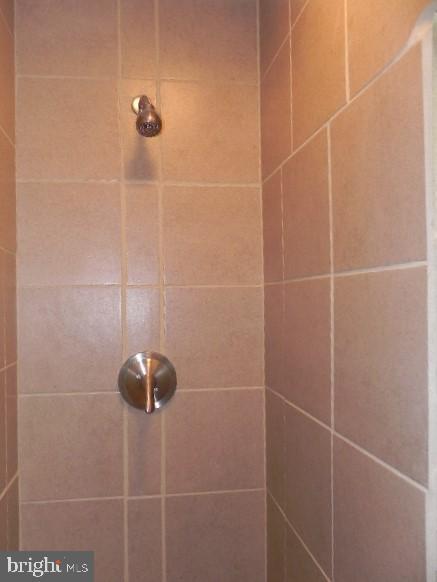 Master Bath Shower - 7005 LOMBARD LN, FREDERICKSBURG