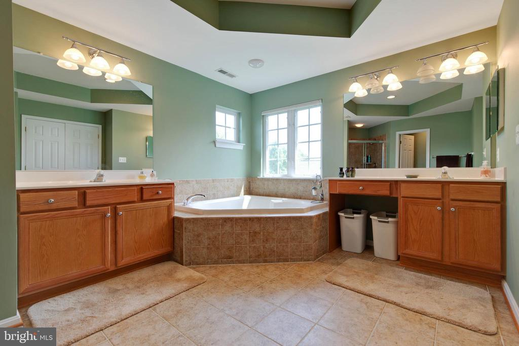 Master Bath - 42835 CONQUEST CIR, BRAMBLETON