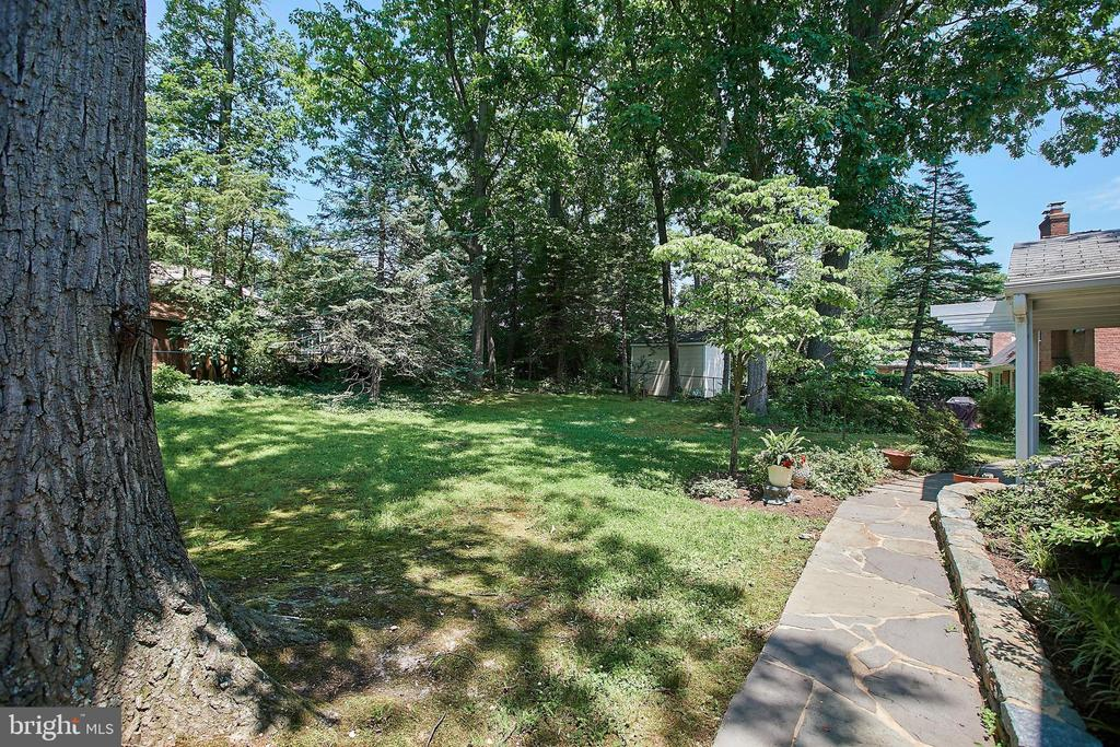 Extensive Detail in the backyard - 2430 CARON LN, FALLS CHURCH