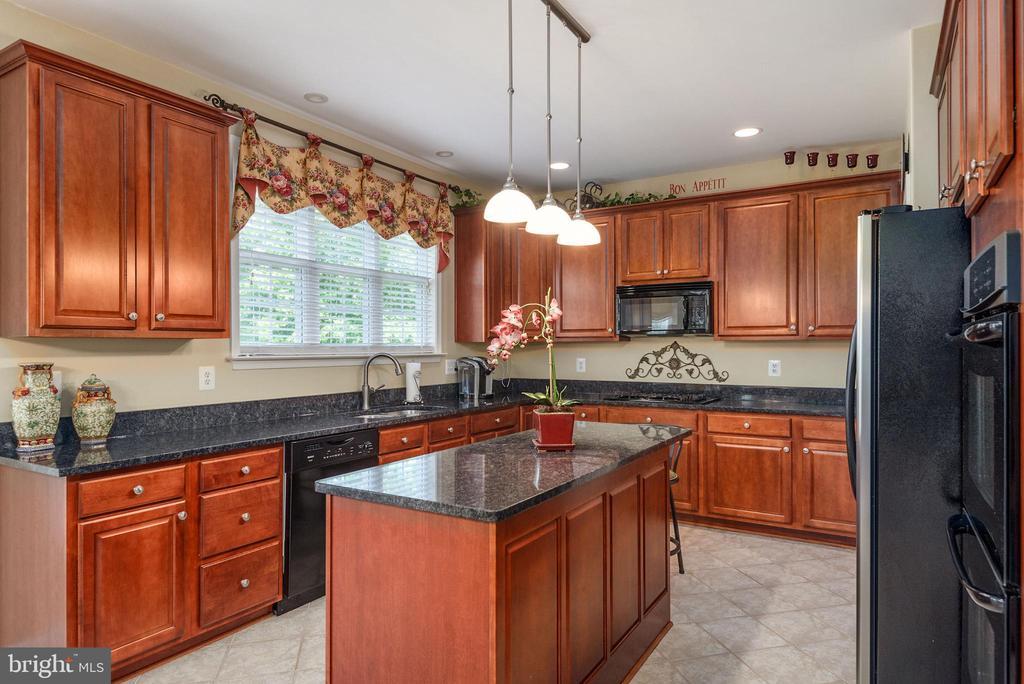 Granite, stainless & upgraded cabinets in kitchen. - 51 RIVER RIDGE LN, FREDERICKSBURG