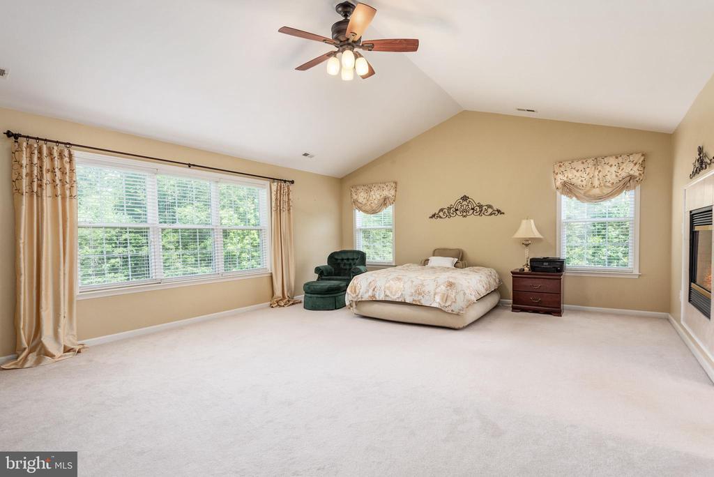 Elegant enormous master bedroom! - 51 RIVER RIDGE LN, FREDERICKSBURG