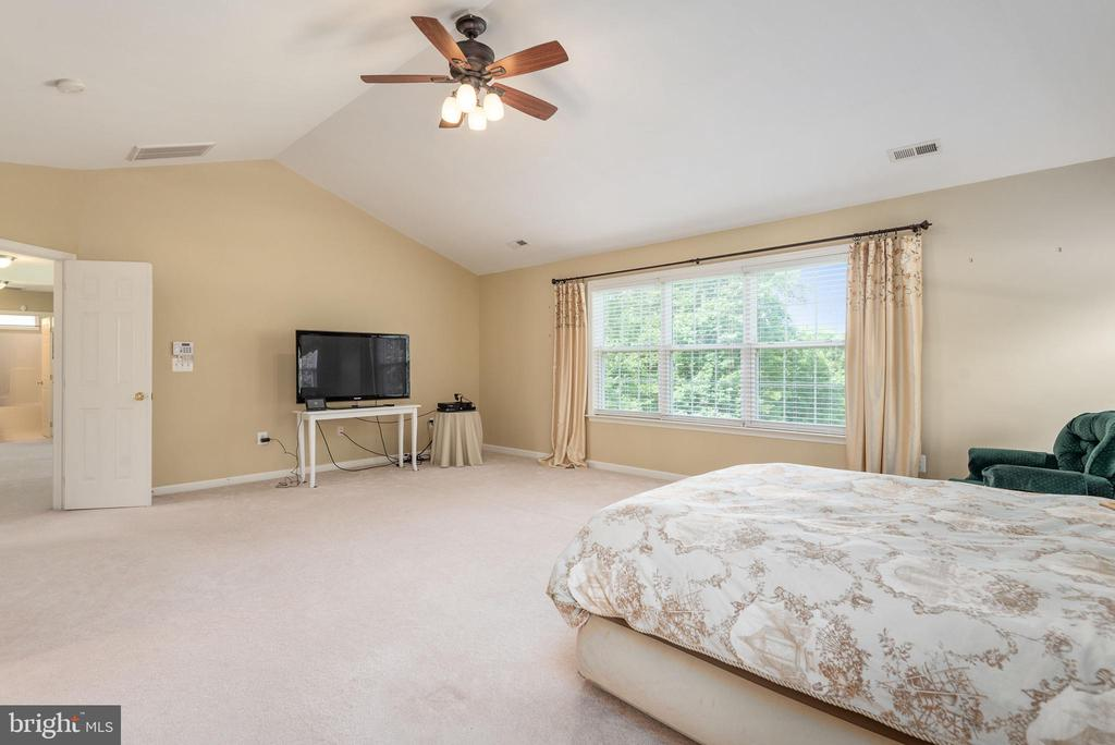 Master w/ ceiling fan and vaulted ceiling. - 51 RIVER RIDGE LN, FREDERICKSBURG