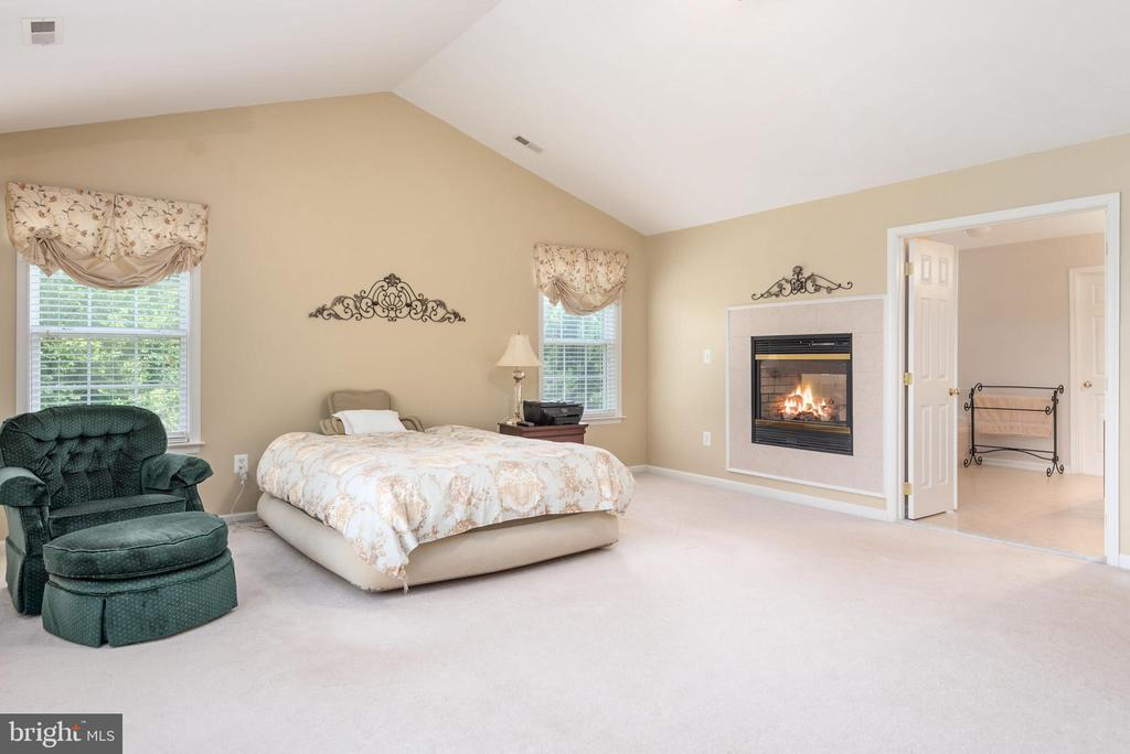 Two sided gas fireplace for bedroom and bath. - 51 RIVER RIDGE LN, FREDERICKSBURG
