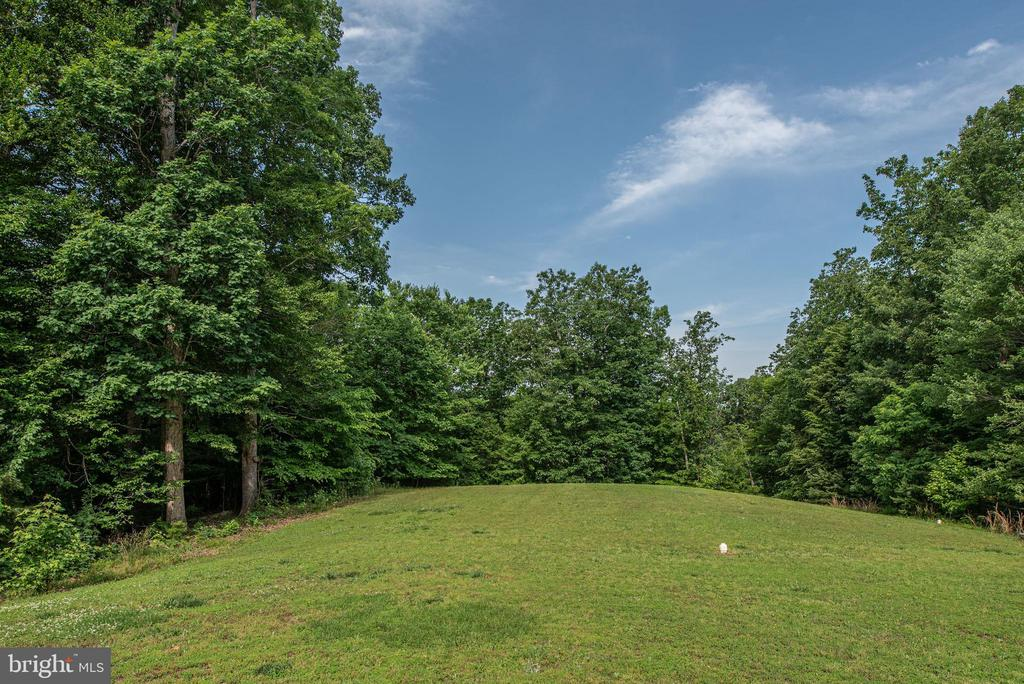 Your backyard view where you can walk to the river - 51 RIVER RIDGE LN, FREDERICKSBURG