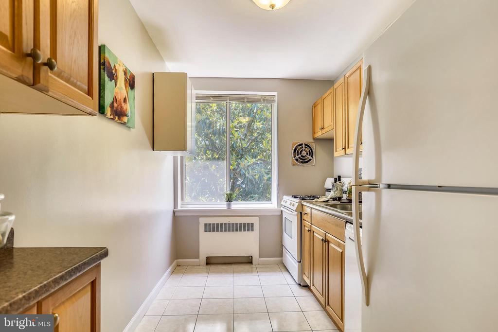 Updated kitchen - 4100 W ST NW #515, WASHINGTON
