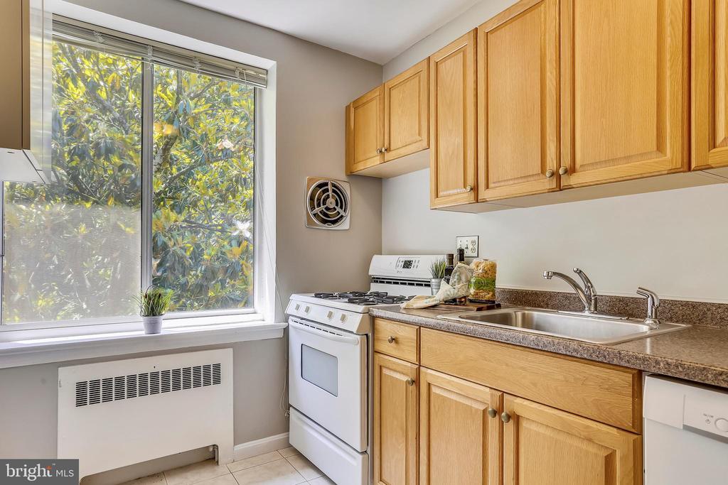 Light and bright kitchen - 4100 W ST NW #515, WASHINGTON