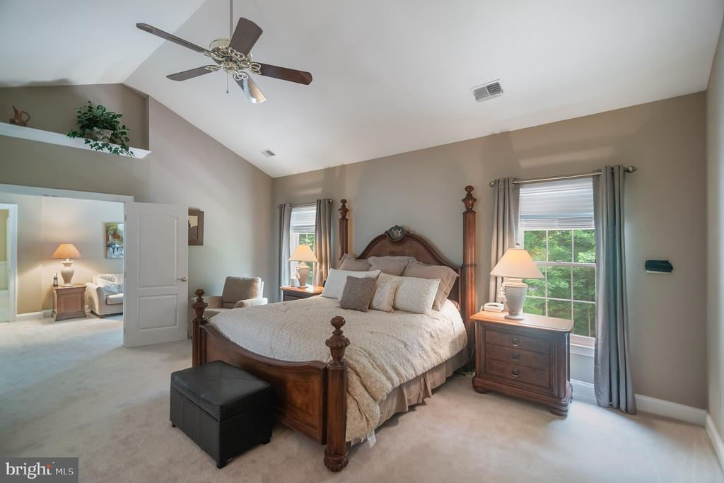 Spacious owner's suite with vaulted ceiling - 12009 BENNETT FARMS CT, OAK HILL