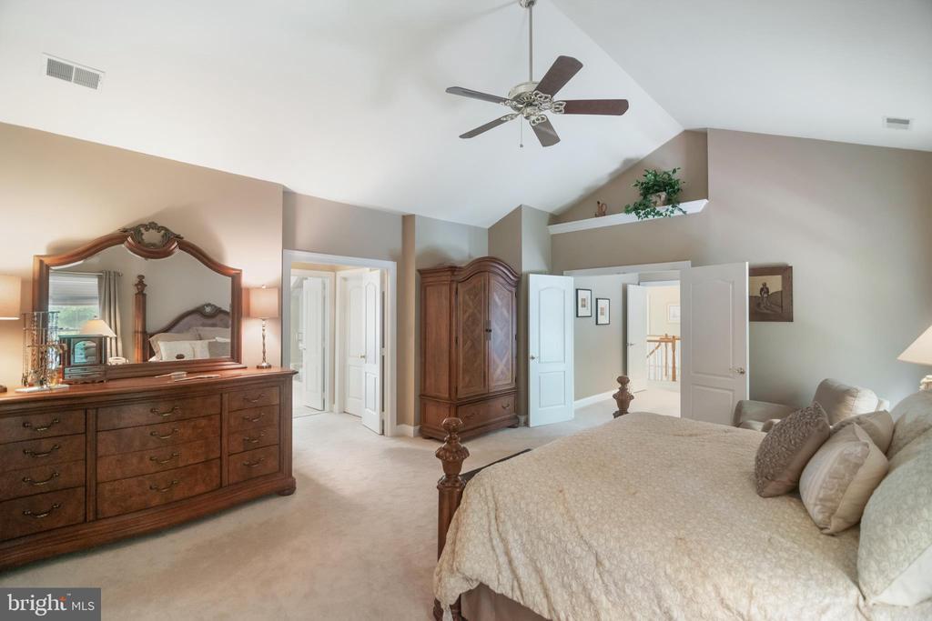 Owner suite has 2 walk-in closets, ceiling fan - 12009 BENNETT FARMS CT, OAK HILL