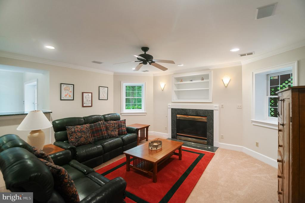 Additional area with gas fireplace - 12009 BENNETT FARMS CT, OAK HILL