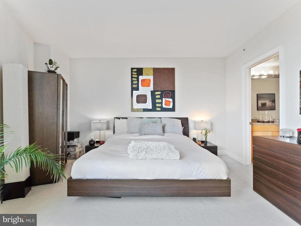 Master Bedroom - 8220 CRESTWOOD HEIGHTS DR #517, MCLEAN
