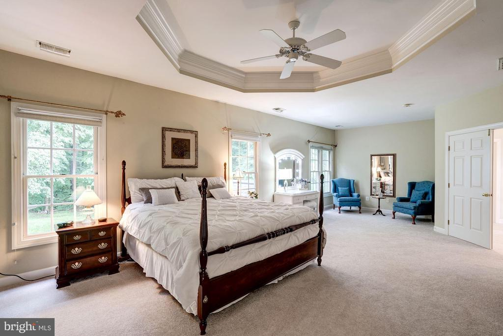 Owner's suite with tray celing - 47297 OX BOW CIR, STERLING