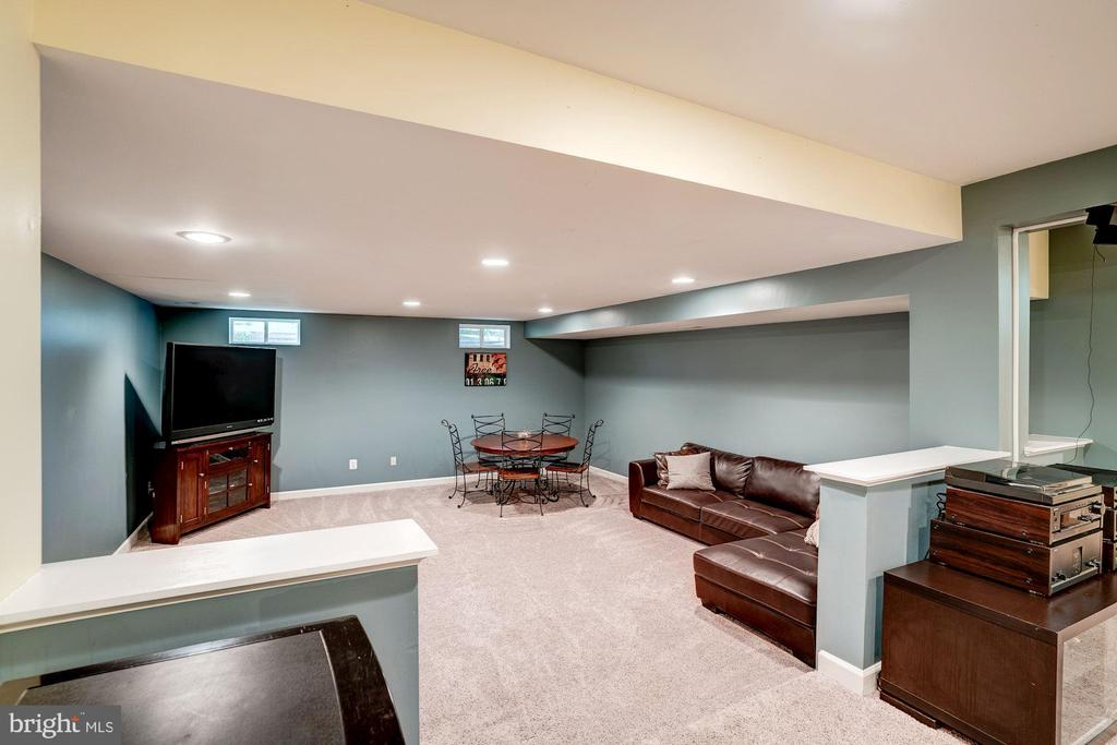 Lower level recreation room - 47297 OX BOW CIR, STERLING