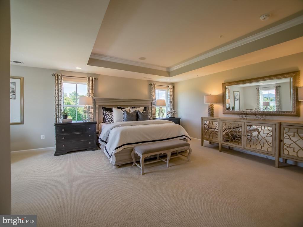 owners suite - 217 BRASHEARS CT, WALKERSVILLE