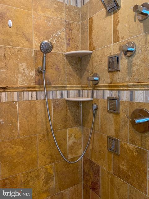 Mater Bathroom Spa Shower - 1602 MONTMORENCY DR, VIENNA