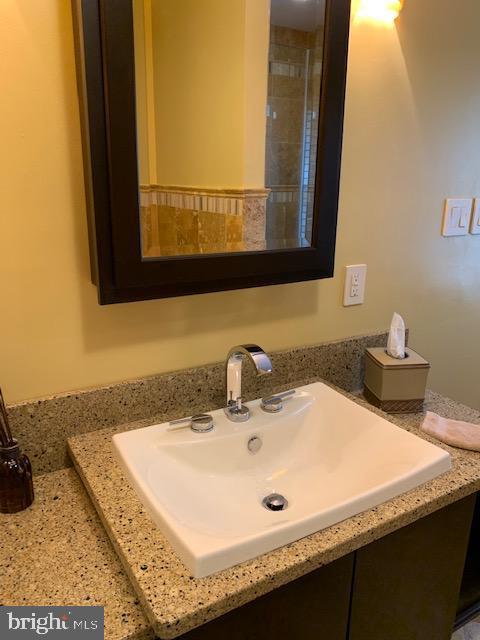 Master Bathroom sink - 1602 MONTMORENCY DR, VIENNA