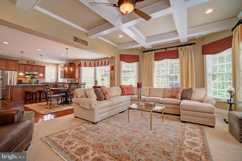 Beautiful Coffered Ceiling and Windows Galore - 42436 MORELAND POINT CT, ASHBURN