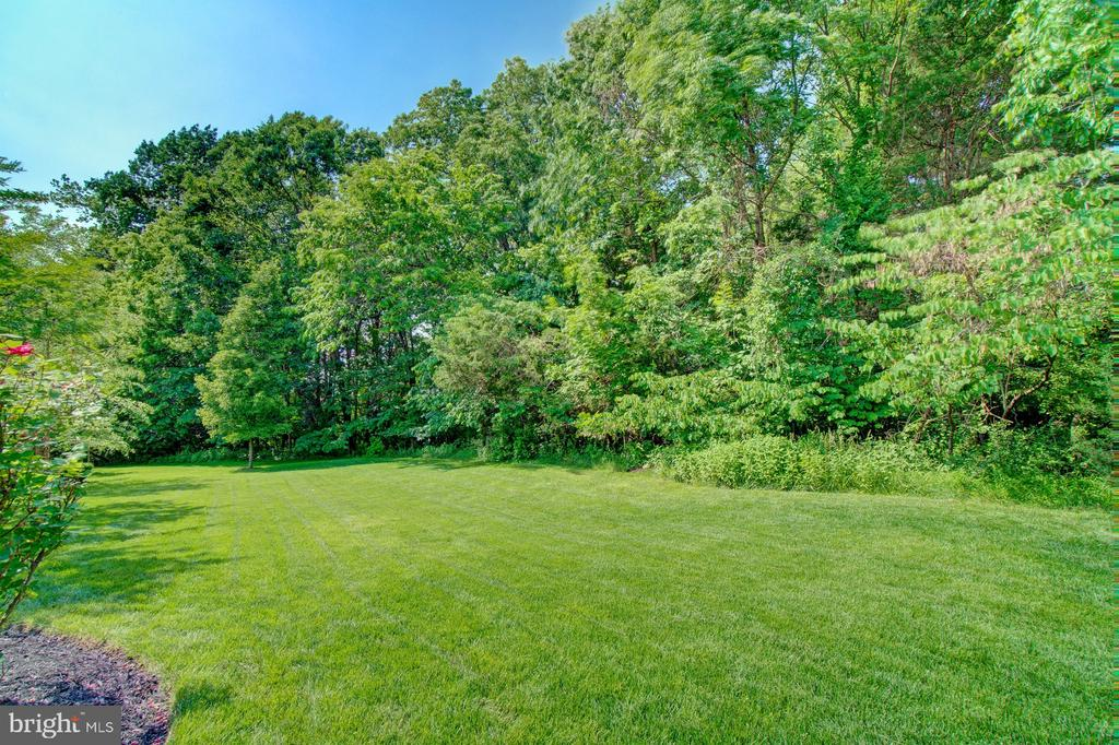 PREMIUM LOT-Very Private Backyard-Backs to Trees! - 42436 MORELAND POINT CT, ASHBURN