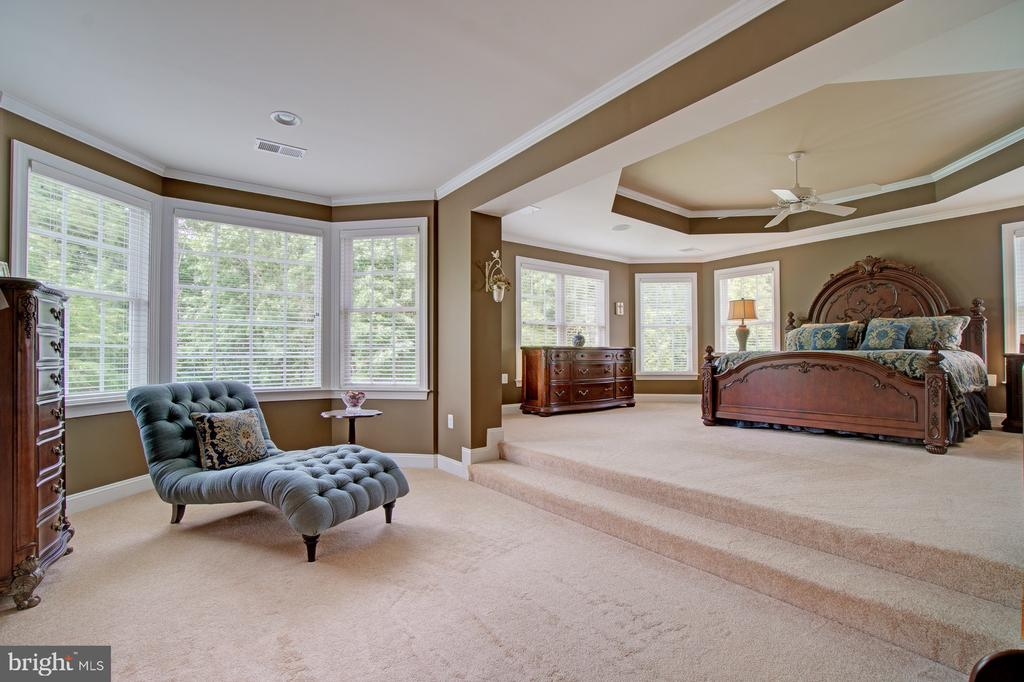 Huge Owner's Suite with Separate Sitting Area - 42436 MORELAND POINT CT, ASHBURN