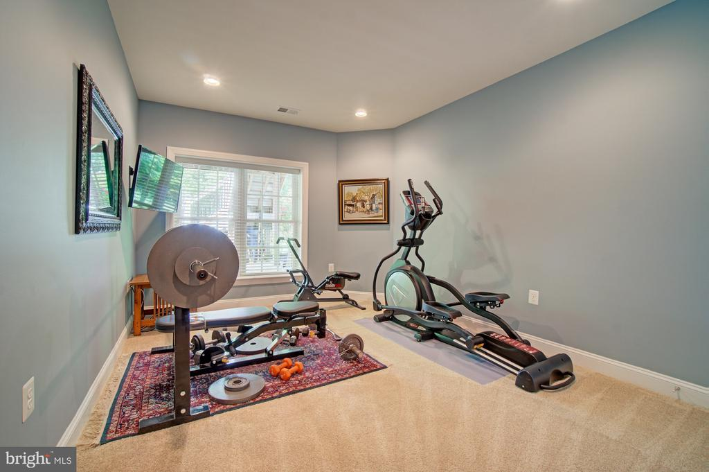 Lower Level 5th Bedroom Currently an Exercise Room - 42436 MORELAND POINT CT, ASHBURN