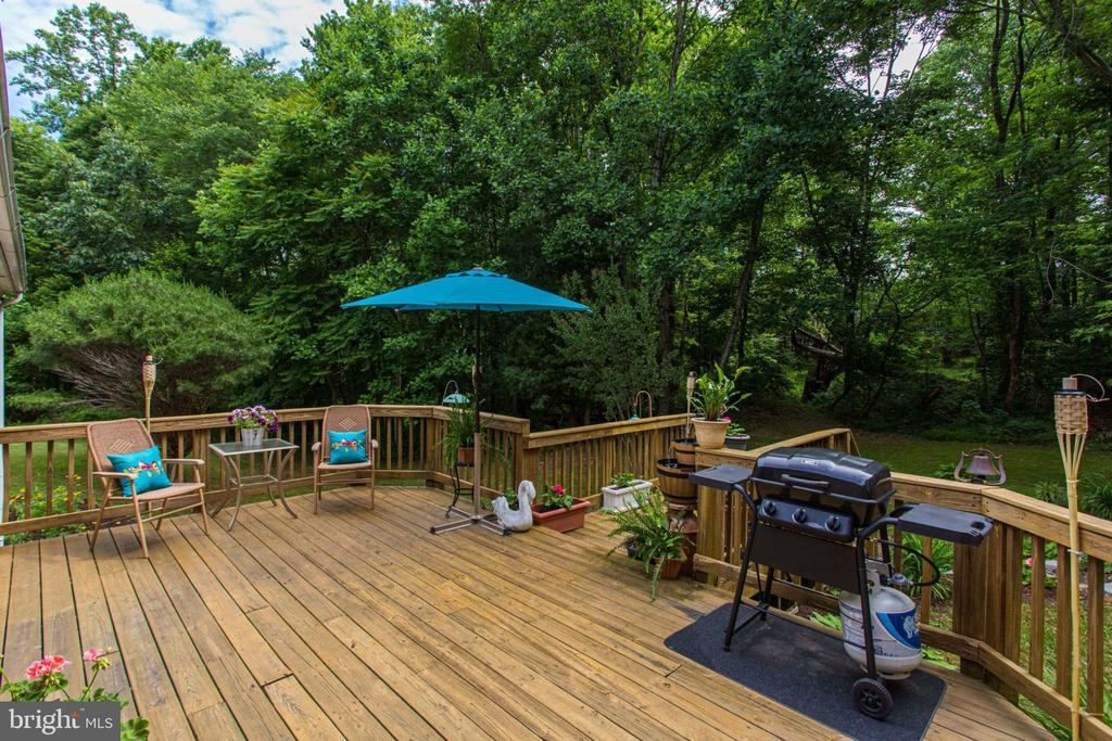 Private and Beautiful - 6800 TOKEN VALLEY RD, MANASSAS